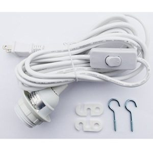 light cord set with switch